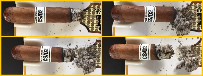Case Study CS 02 Robusto 3